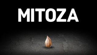 Mitoza Guía completa de texto para conseguir logros